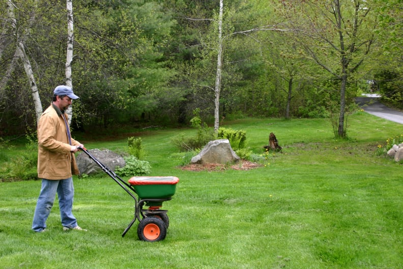 Fertilizing a lawn