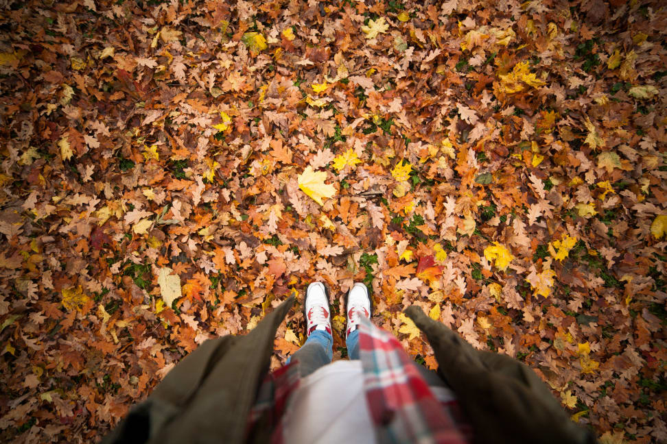 A person standing in leaves