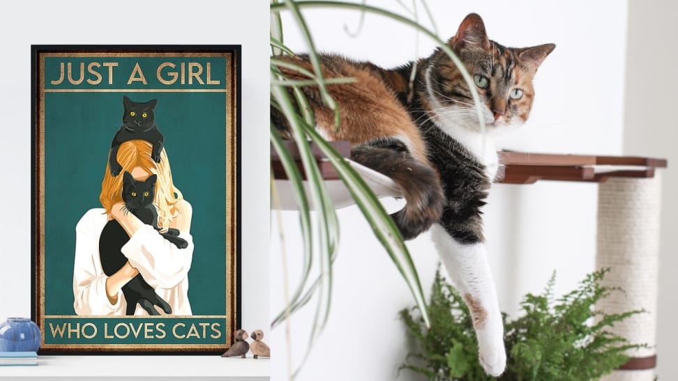 If you love cats, you'll absolutely adore these fun and functional items.