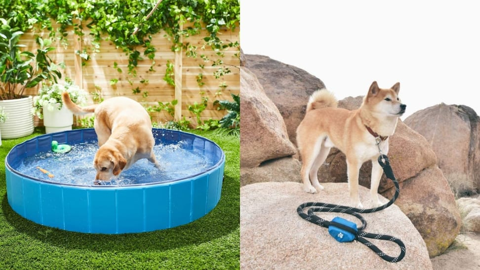 A swimming pool and leash poop bag holder