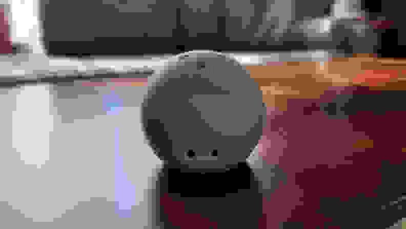 Echo Dot back