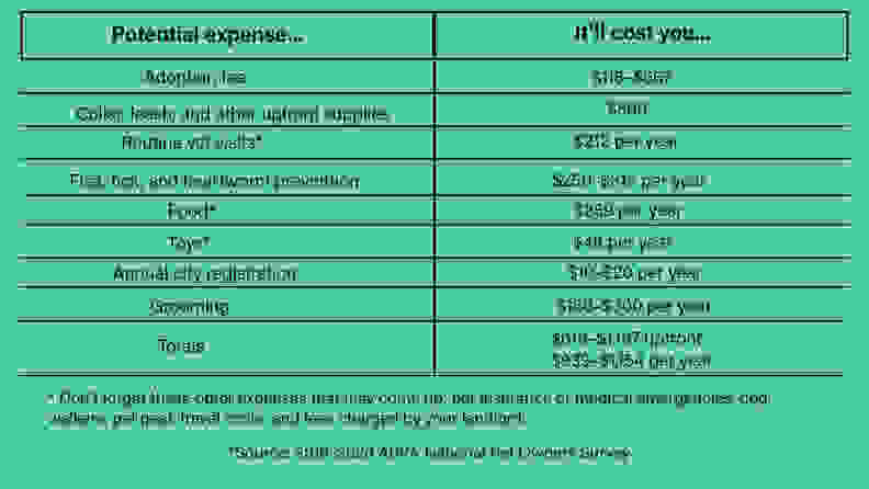 Expenses to adopt a dog