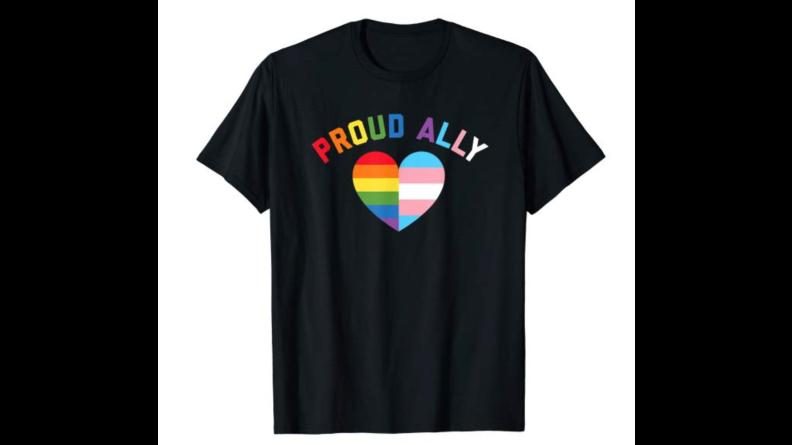 LGBTQIA Pride Tees Ally Shirt