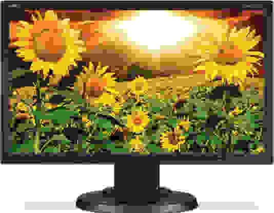 Product Image - NEC E201W-BK
