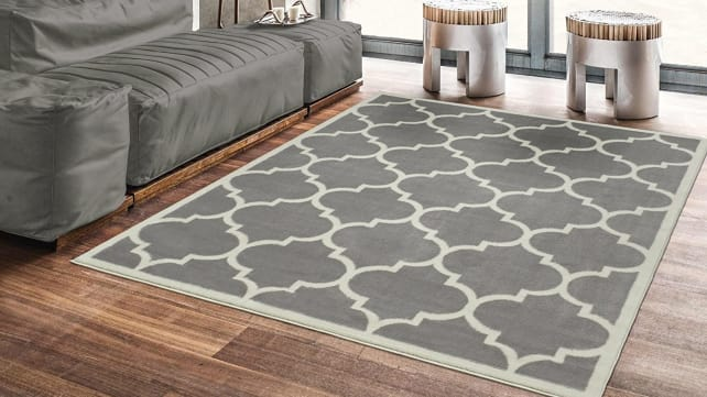 Ottomanson Paterson Collection Rug