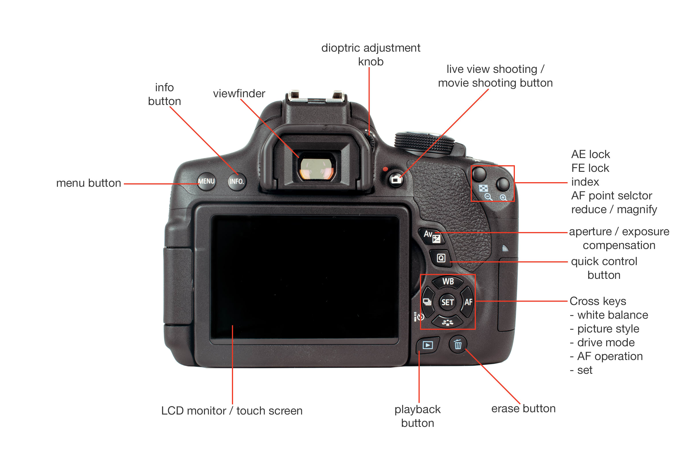 Rear view of the Canon T6i.