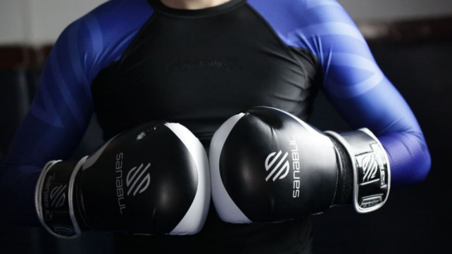 Best health and fitness gifts 2018: Sanabul boxing gloves
