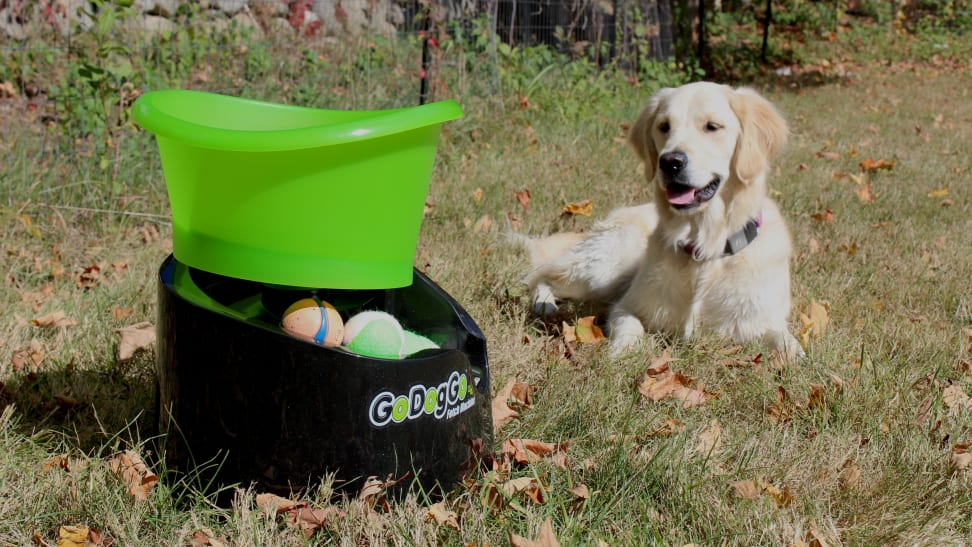 The GoDogGo Fetch Machine is a fun automatic ball launcher that will keep your dog busy for hours as they chase balls in the yard.