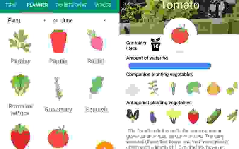 Vegetable Pot Garden App
