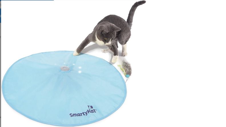 Motion concealed toy
