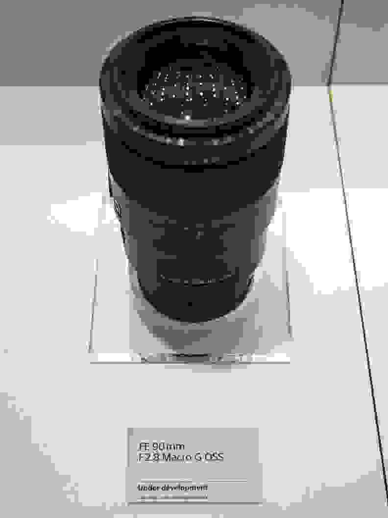 FE 90mm f/2.8 Macro G OSS
