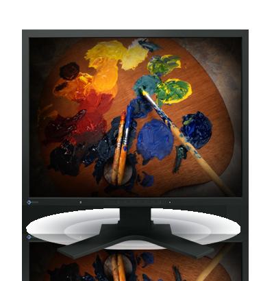 Product Image - Eizo FlexScan S2100