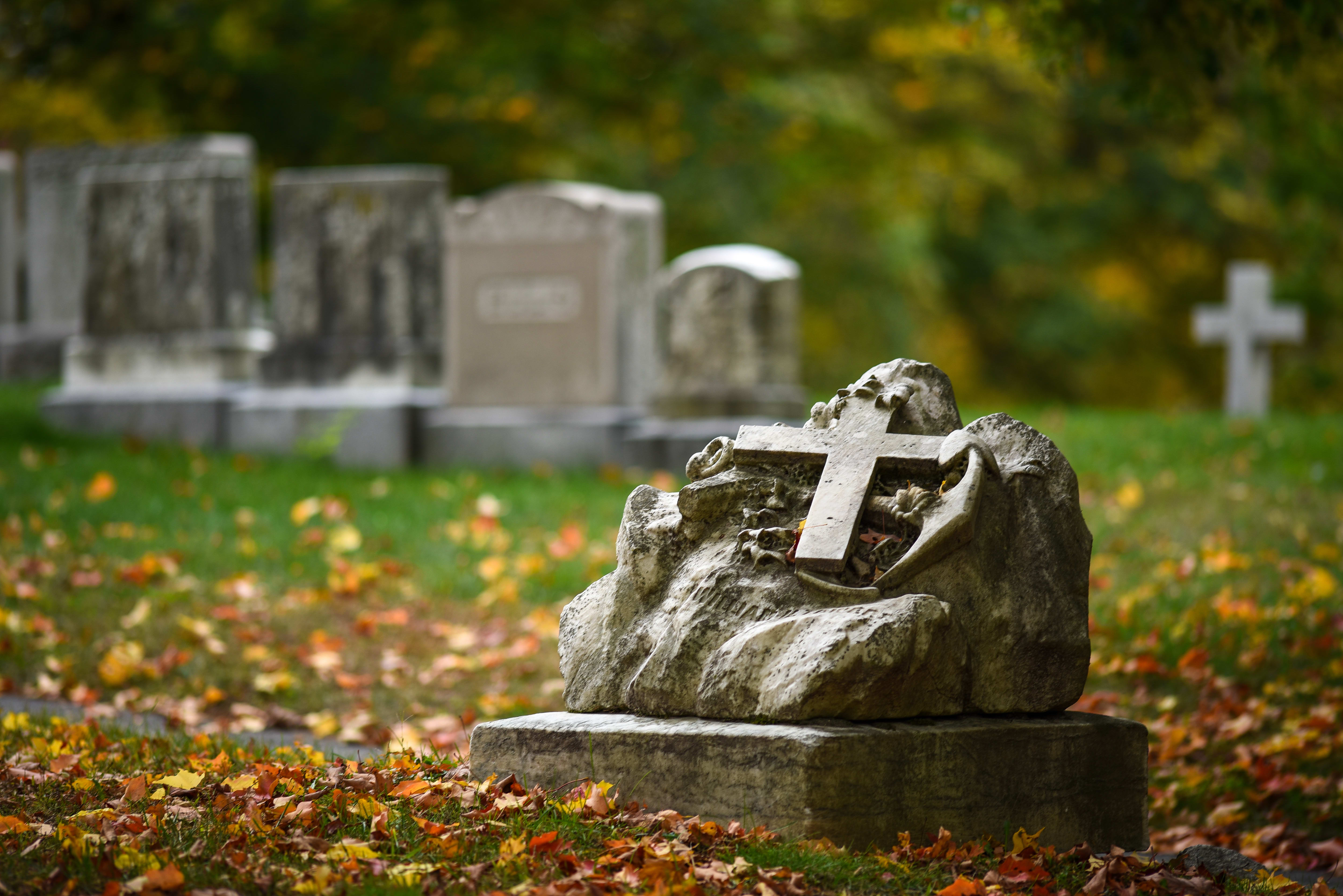 The D750's highlight control is an asset when photographing white subjects such as these headstones.