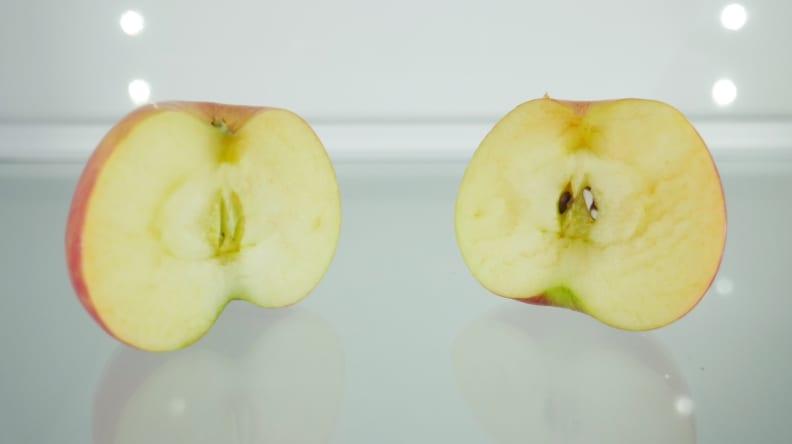 Fridge Fresh Apple Test