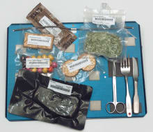 ISS Food Tray