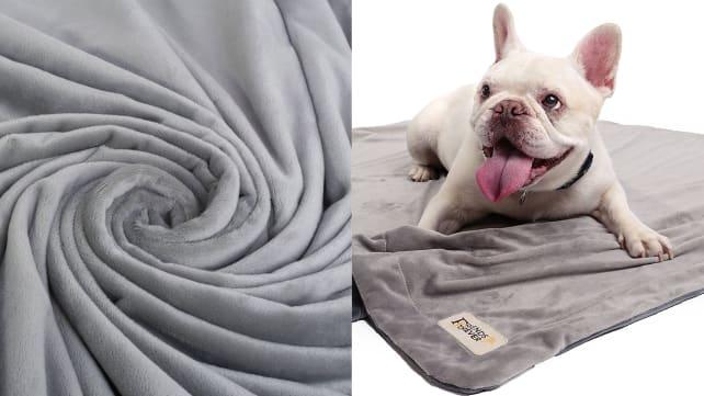 Friends Forever Deluxe Dog Blanket