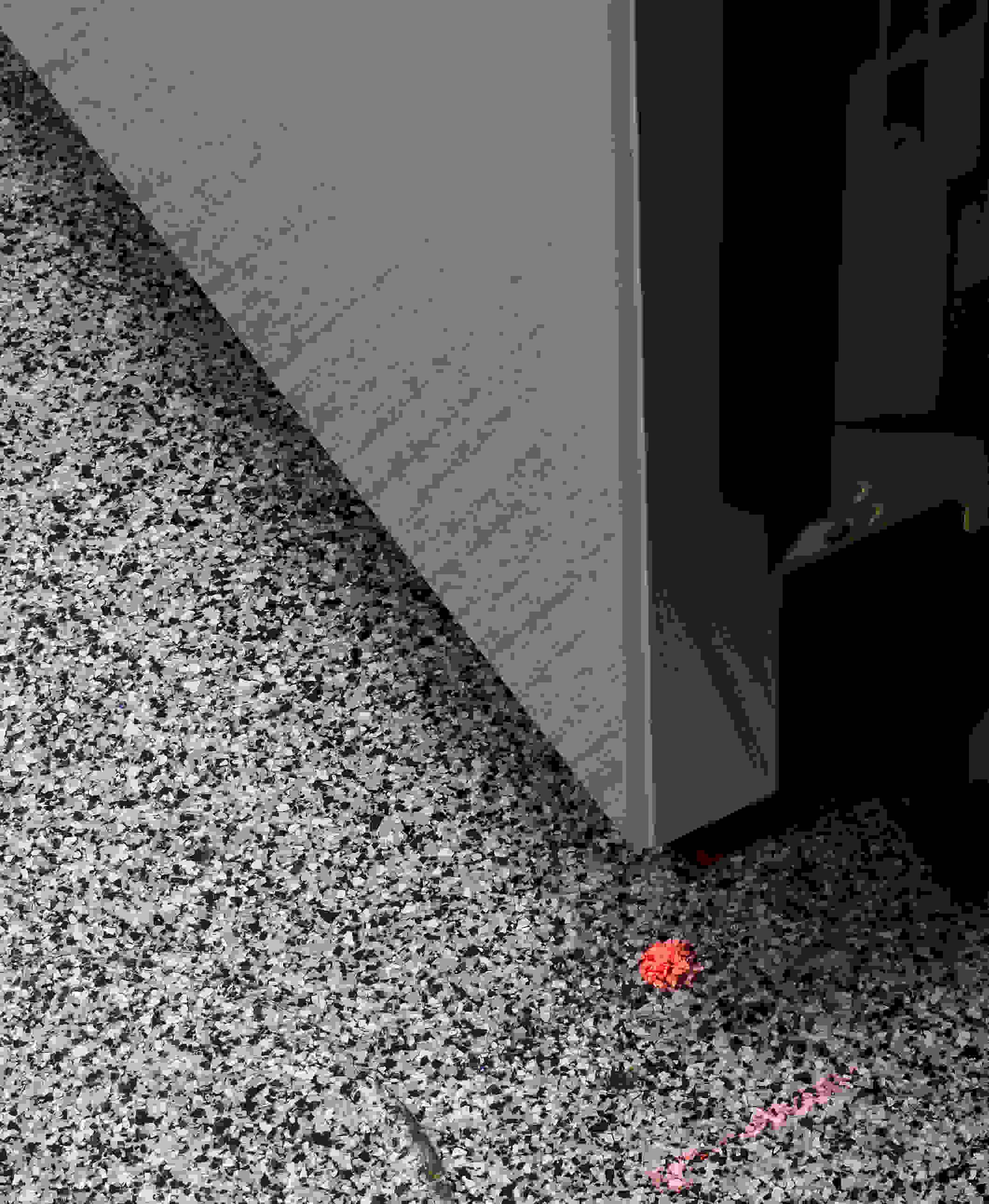 Bosch SHS5AV55UC InfoLight