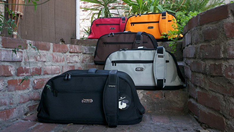 An image of several cat carriers in different colors.
