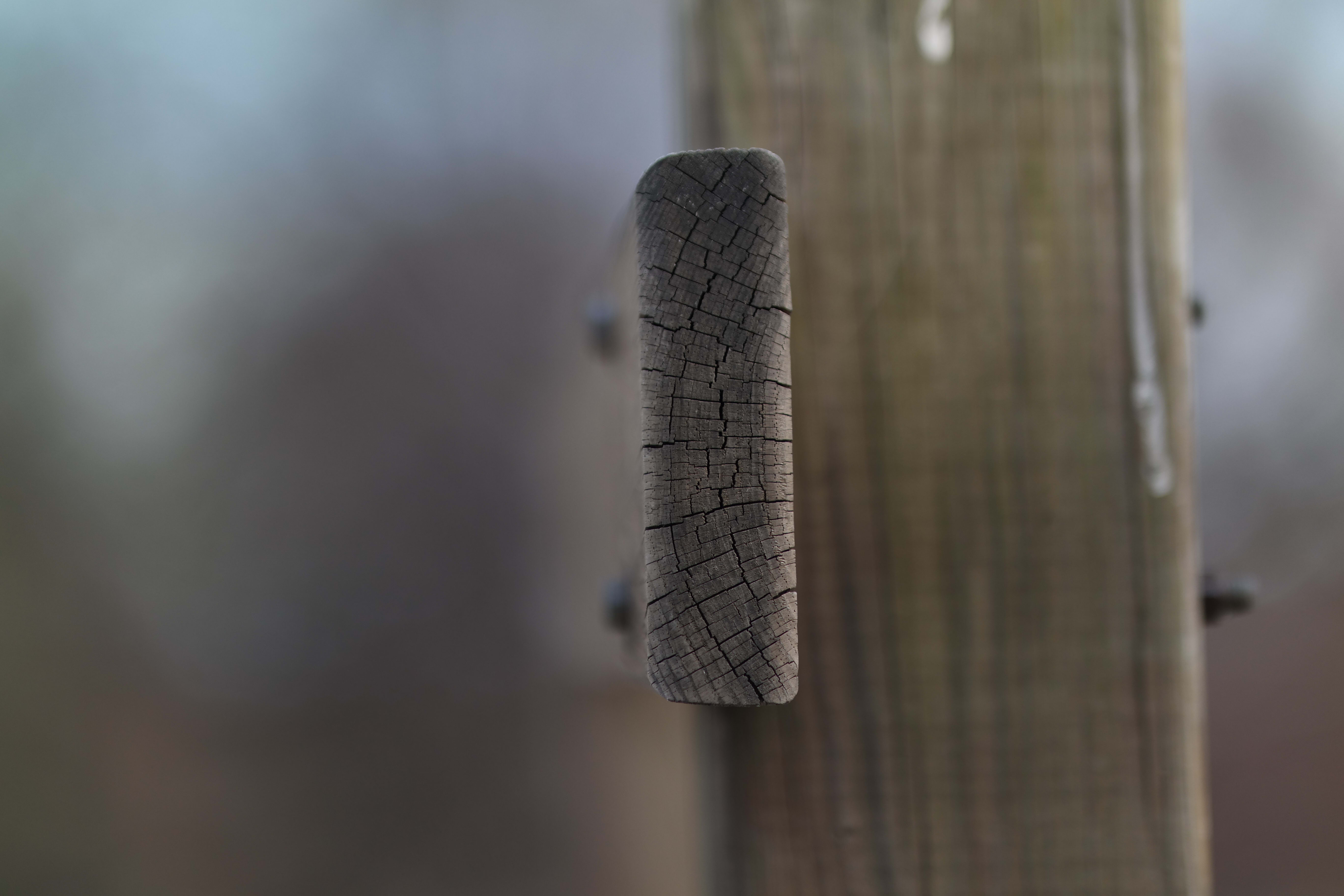 The NX30 paired with the 85mm f/1.4 lens produces sharp details, excellent bokeh, and very shallow depth of field.