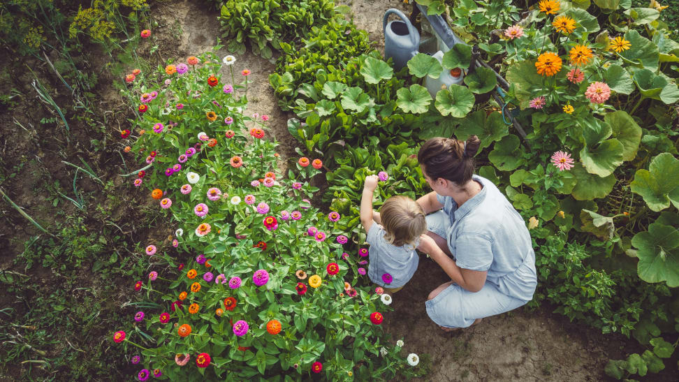 A mother and child sit in home garden.