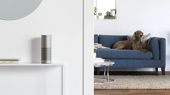 Amazon Echo Plus in Silver