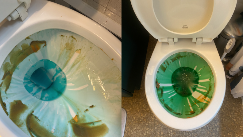 Dried brown miso paste is spread around the inside of a toilet bowl and blue cleaner gel covers it