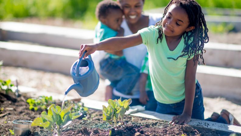 grade school gardening