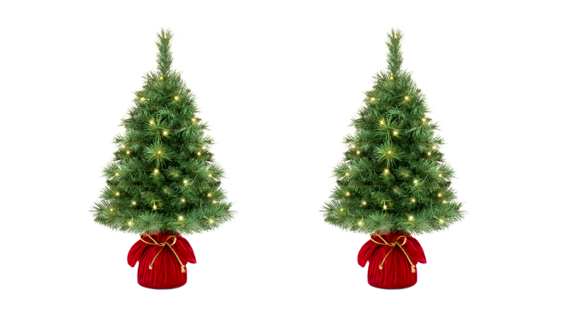 Two mini Christmas trees with lights on a white background.