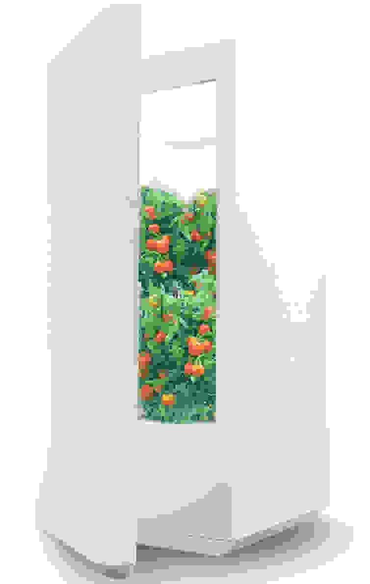 Everblume rendering