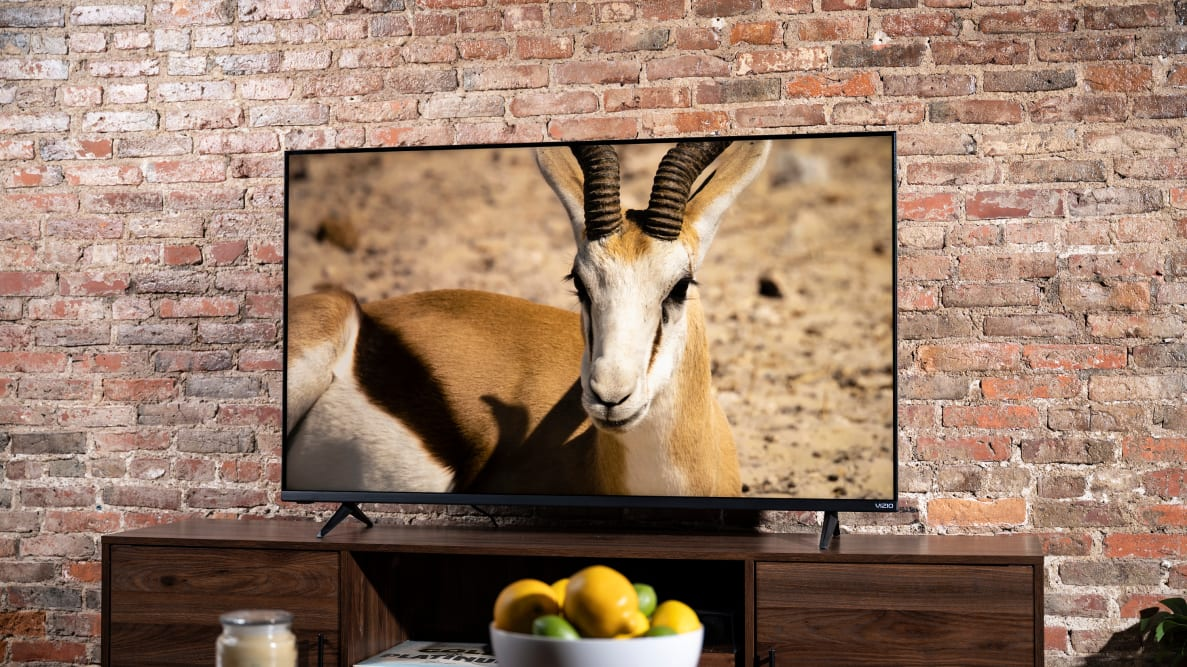 The 55-inch Vizio M-Series (MQ6) displaying 4K/HDR content in a living room setting