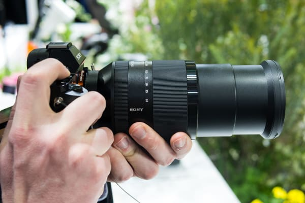 Sony 24–240mm at 240mm