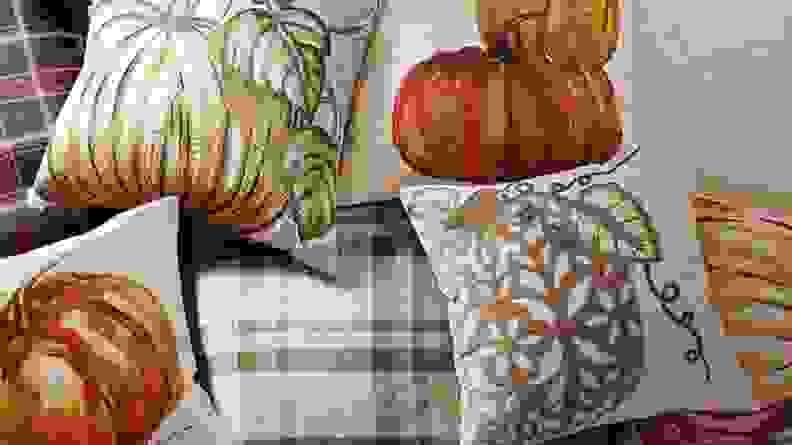 Pottery Barn Pumpkin Pillow Cover