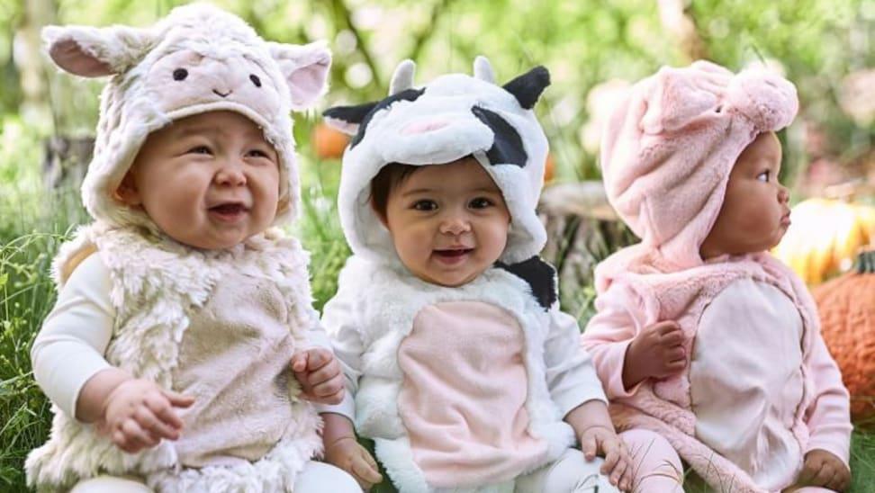 Three infants dressed as barnyard animals for Halloween.